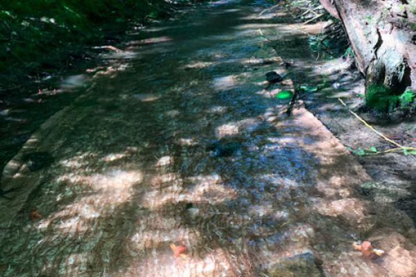 rivermat-1C46A7D74-A112-9909-0F4C-7CC698201477.jpg